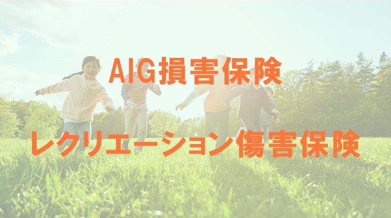 AIG損保のレクリエーション傷害保険