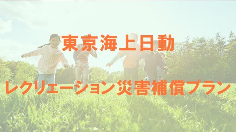 東京海上日動のレクリェーション災害補償プラン