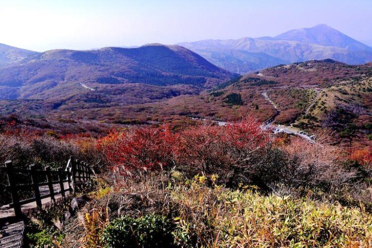 牧ノ戸峠は登山初心者もOK!おすすめコースやアクセス、観光スポットも紹介