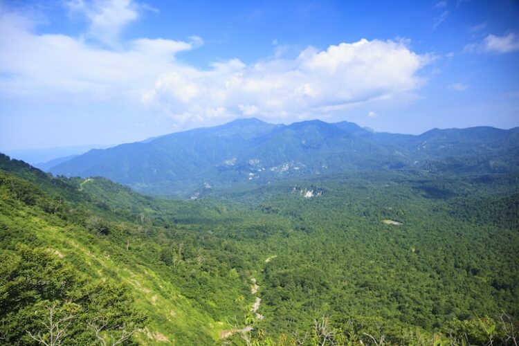 【守門岳】登山初心者におすすめのコース3選と周辺観光スポットをご紹介